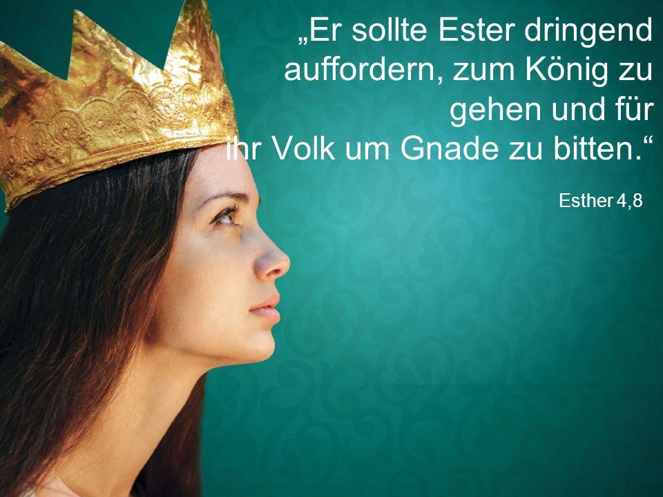 """Esther 4,8 """"Er sollte Ester dringend auffordern, zum König zu gehen und für ihr Volk um Gnade zu bitten."""""""
