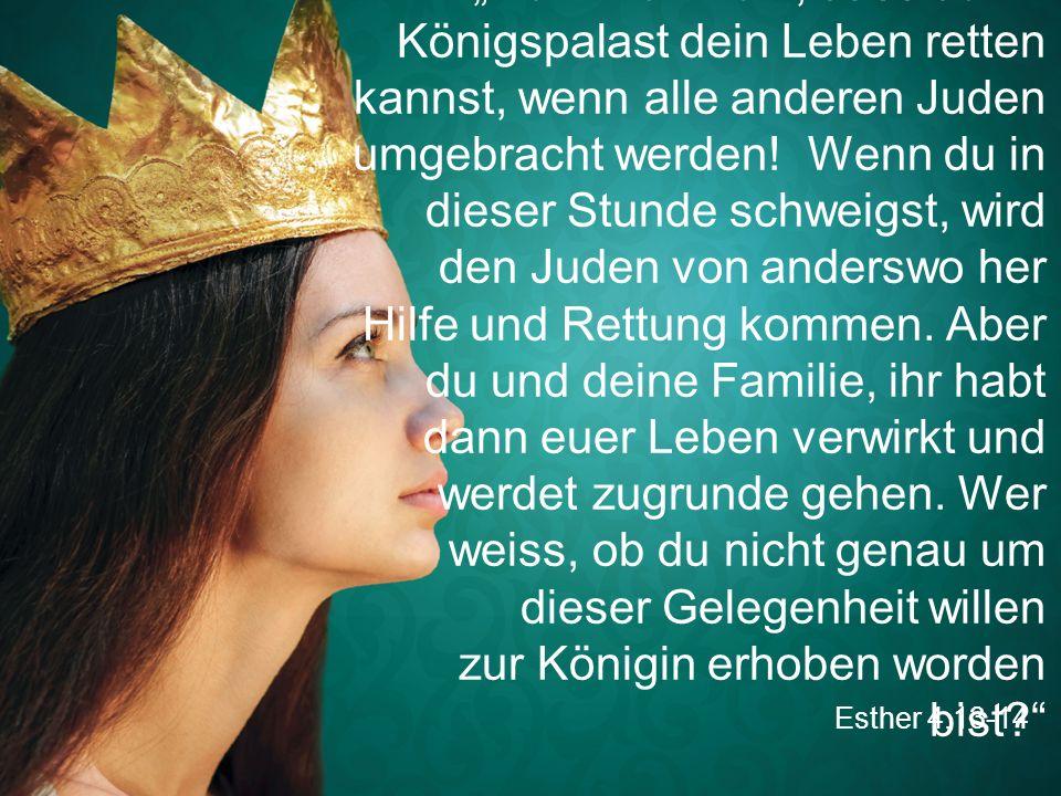 """Esther 4,13-14 """"Denk nur nicht, dass du im Königspalast dein Leben retten kannst, wenn alle anderen Juden umgebracht werden! Wenn du in dieser Stunde"""