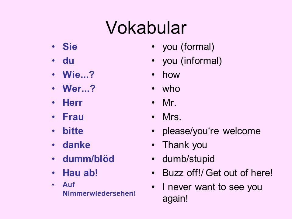 Vokabular Sie du Wie...? Wer...? Herr Frau bitte danke dumm/blöd Hau ab! Auf Nimmerwiedersehen! you (formal) you (informal) how who Mr. Mrs. please/yo