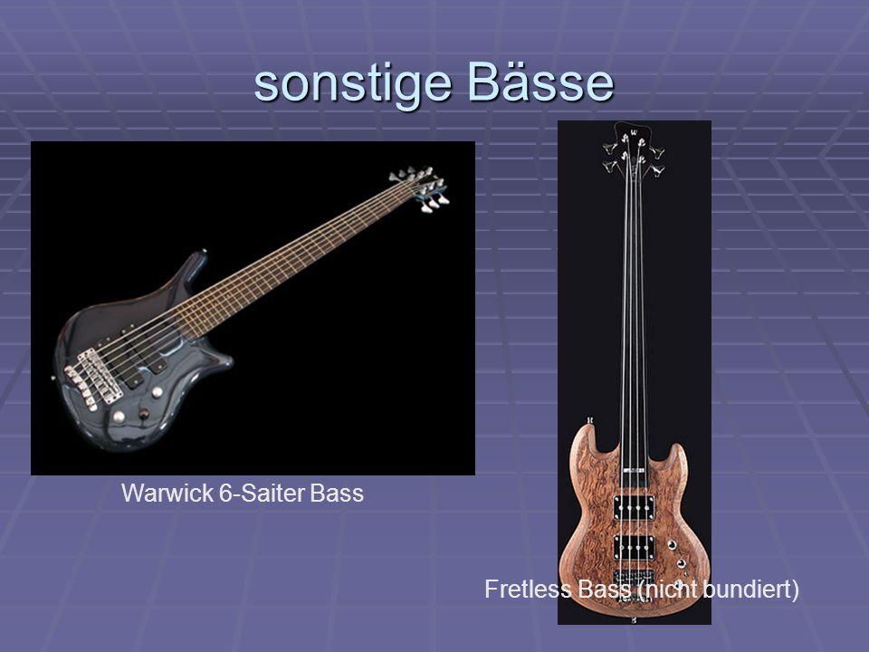 sonstige Bässe Warwick 6-Saiter Bass Fretless Bass (nicht bundiert)