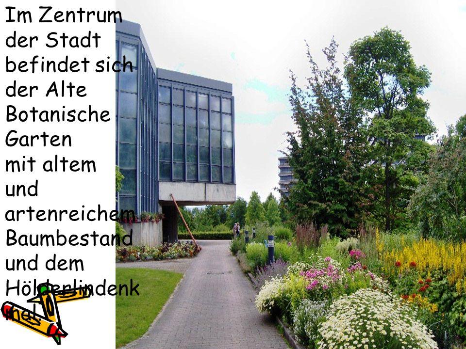 Im Zentrum der Stadt befindet sich der Alte Botanische Garten mit altem und artenreichem Baumbestand und dem Hölderlindenk mal.