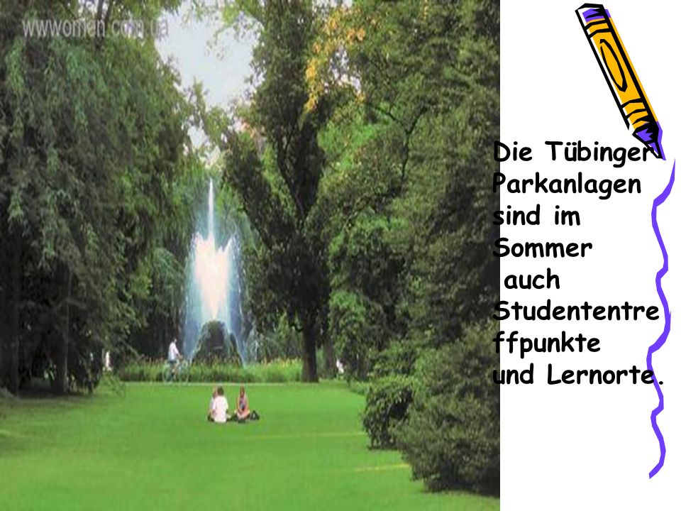 Die Tübinger Parkanlagen sind im Sommer auch Studententre ffpunkte und Lernorte.