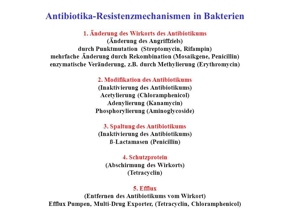 Antibiotika-Resistenzmechanismen in Bakterien 1. Änderung des Wirkorts des Antibiotikums (Änderung des Angriffziels) durch Punktmutation (Streptomycin