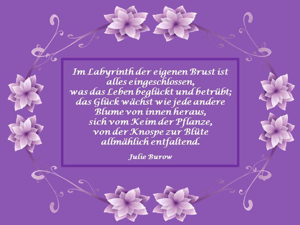 Im Labyrinth der eigenen Brust ist alles eingeschlossen, was das Leben beglückt und betrübt; das Glück wächst wie jede andere Blume von innen heraus, sich vom Keim der Pflanze, von der Knospe zur Blüte allmählich entfaltend.