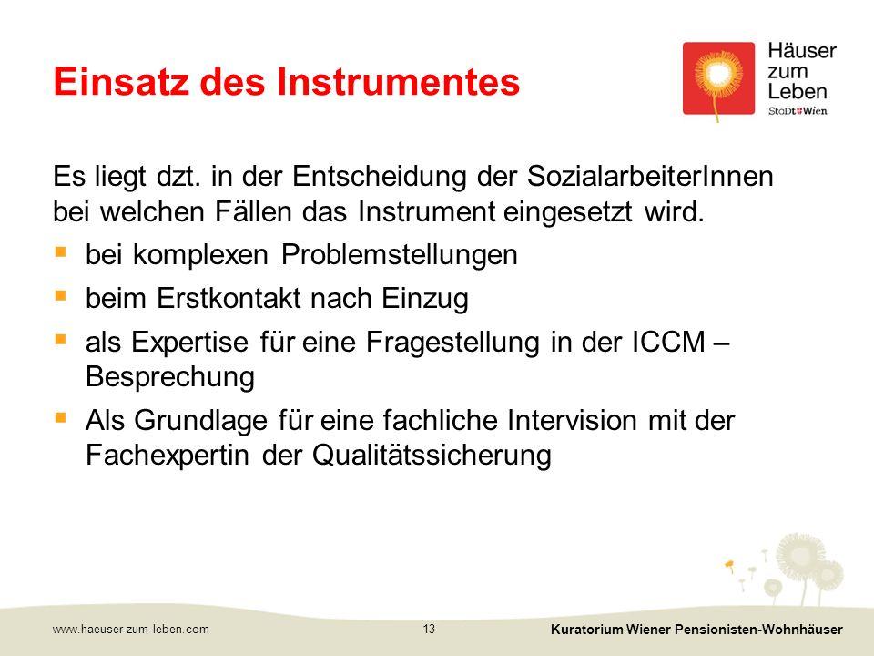 Einsatz des Instrumentes Es liegt dzt.