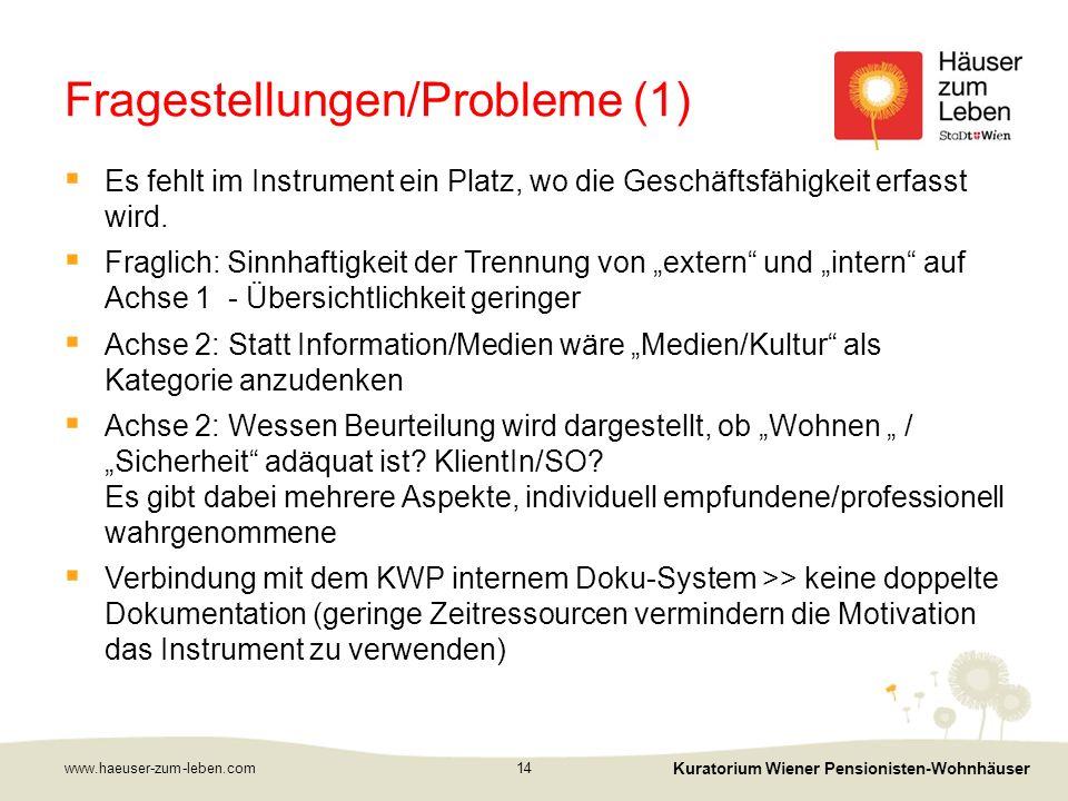 Fragestellungen/Probleme (1)  Es fehlt im Instrument ein Platz, wo die Geschäftsfähigkeit erfasst wird.