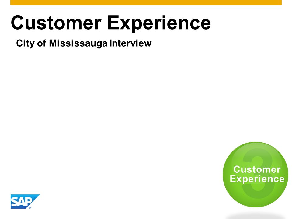 Customer Experience City of Mississauga Interview 3 Customer Experience