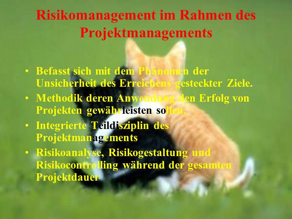 Risikomanagement im Rahmen des Projektmanagements Befasst sich mit dem Phänomen der Unsicherheit des Erreichens gesteckter Ziele. Methodik deren Anwen