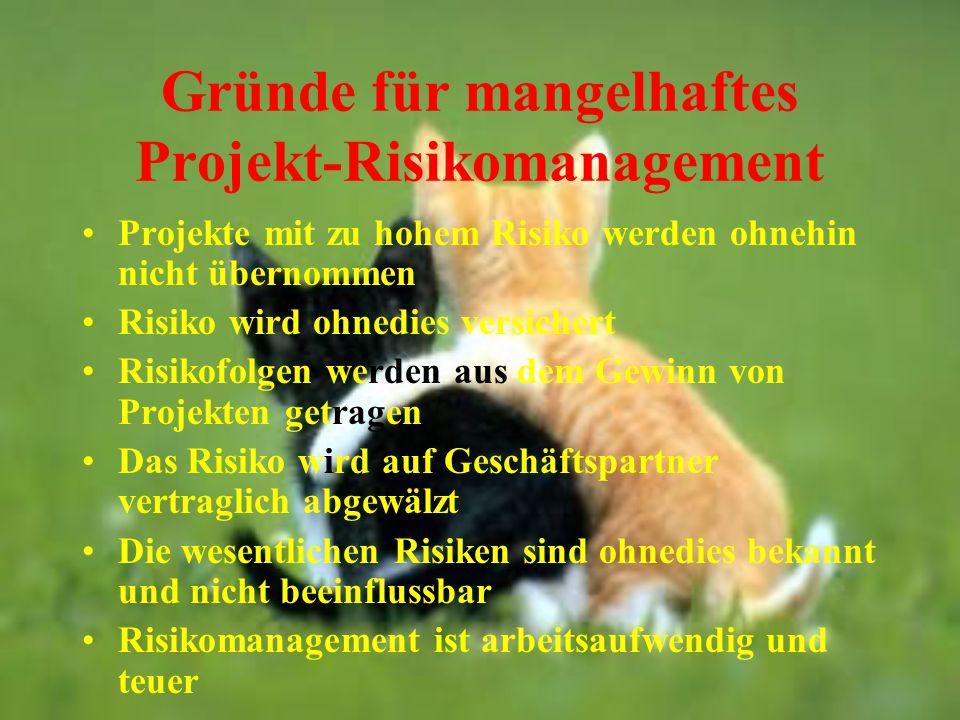 Gründe für mangelhaftes Projekt-Risikomanagement Projekte mit zu hohem Risiko werden ohnehin nicht übernommen Risiko wird ohnedies versichert Risikofo