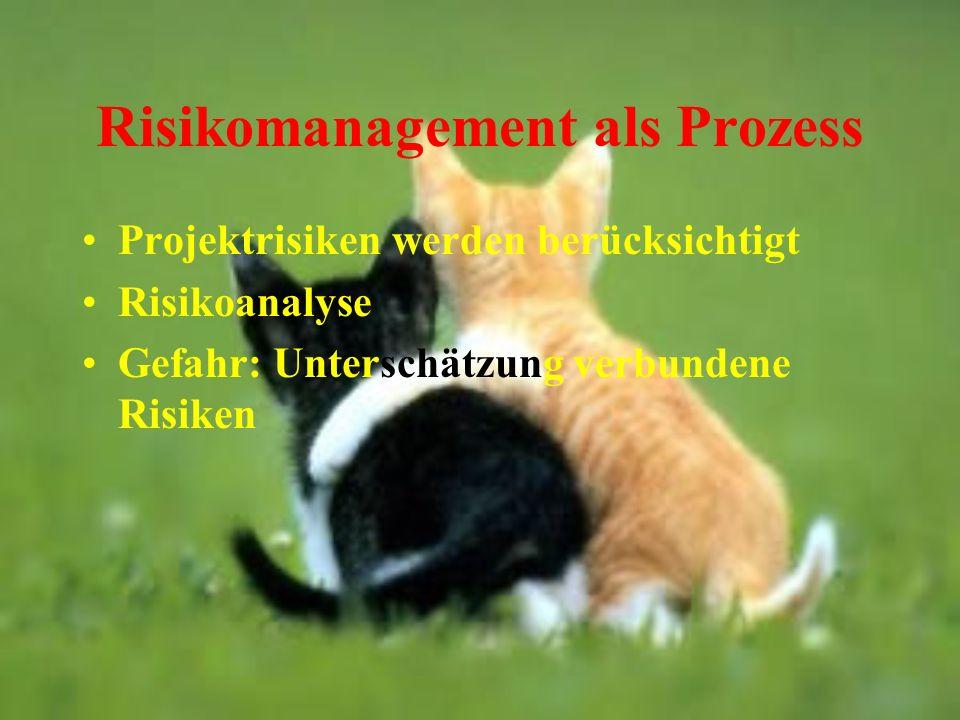 Risikomanagement als Prozess Projektrisiken werden berücksichtigt Risikoanalyse Gefahr: Unterschätzung verbundene Risiken