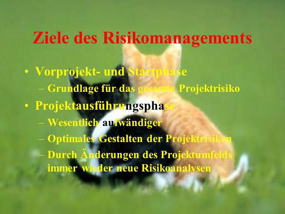 Ziele des Risikomanagements Vorprojekt- und Startphase –Grundlage für das gesamte Projektrisiko Projektausführungsphase –Wesentlich aufwändiger –Optim