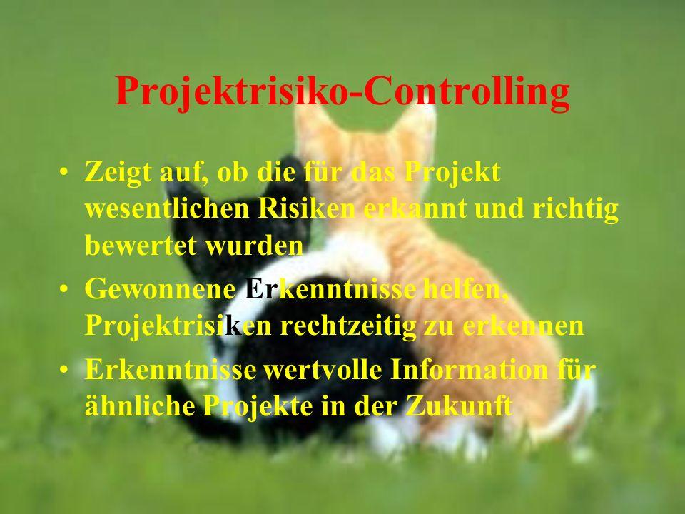 Projektrisiko-Controlling Zeigt auf, ob die für das Projekt wesentlichen Risiken erkannt und richtig bewertet wurden Gewonnene Erkenntnisse helfen, Pr