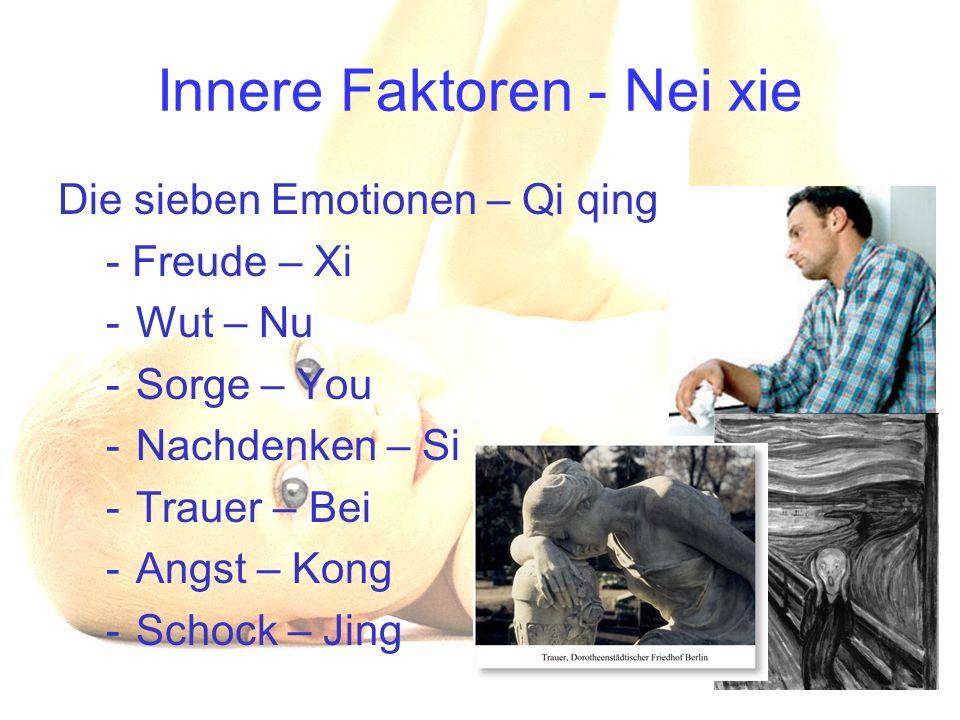 Innere Faktoren - Nei xie Die sieben Emotionen – Qi qing - Freude – Xi -Wut – Nu -Sorge – You -Nachdenken – Si -Trauer – Bei -Angst – Kong -Schock – J