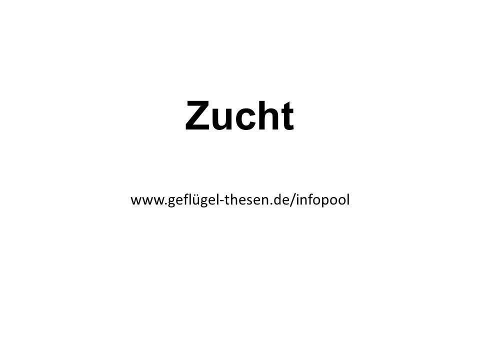 Zucht www.geflügel-thesen.de/infopool