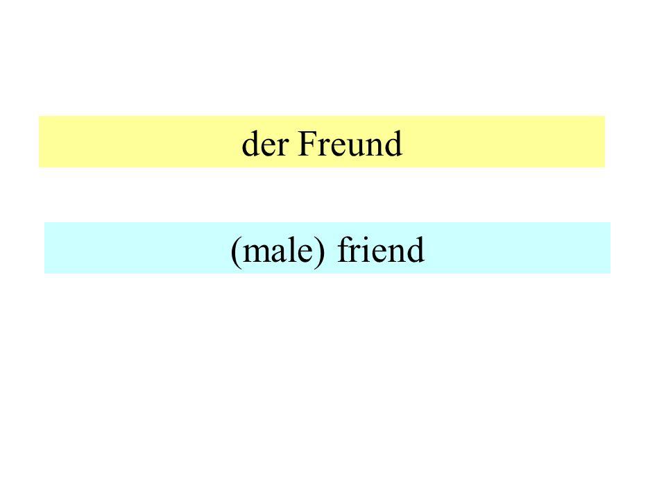 der Freund (male) friend