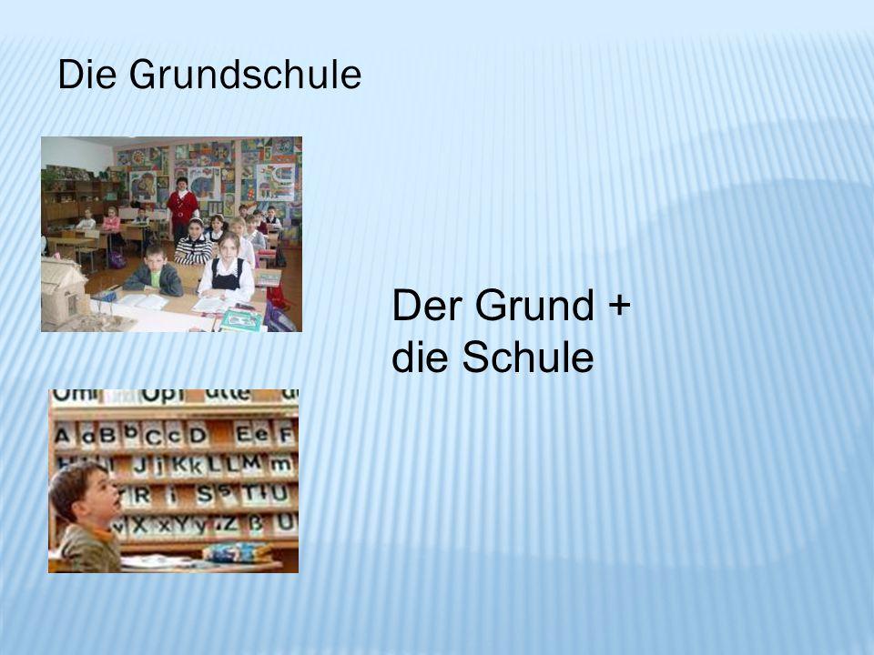 Die Grundschule Der Grund + die Schule