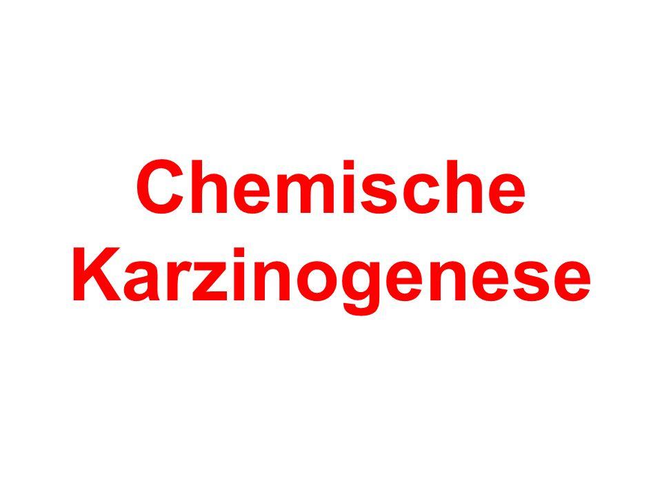 Alkylierende Substanzen O HNHN Ethylenoxid Alkylsulfonsäureester Stickstofflost Ethylenimin-Derivat (nach Mutschler)