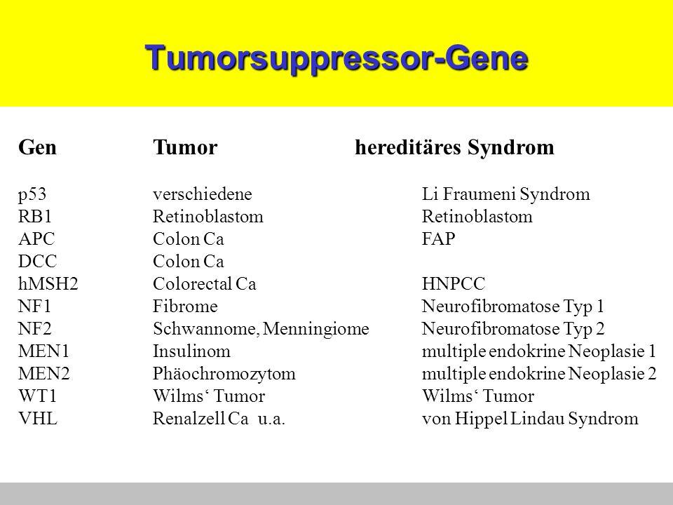 Tumorsuppressor-Gene GenTumorhereditäres Syndrom p53verschiedeneLi Fraumeni Syndrom RB1RetinoblastomRetinoblastom APCColon CaFAP DCCColon Ca hMSH2Colo