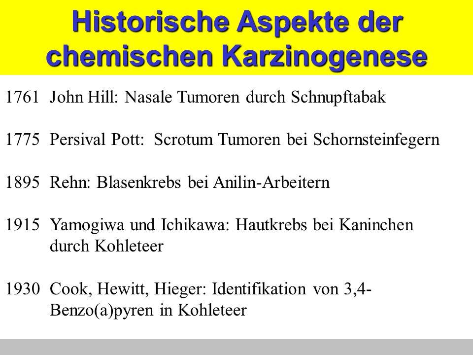 Historische Aspekte der chemischen Karzinogenese 1761John Hill: Nasale Tumoren durch Schnupftabak 1775Persival Pott: Scrotum Tumoren bei Schornsteinfe
