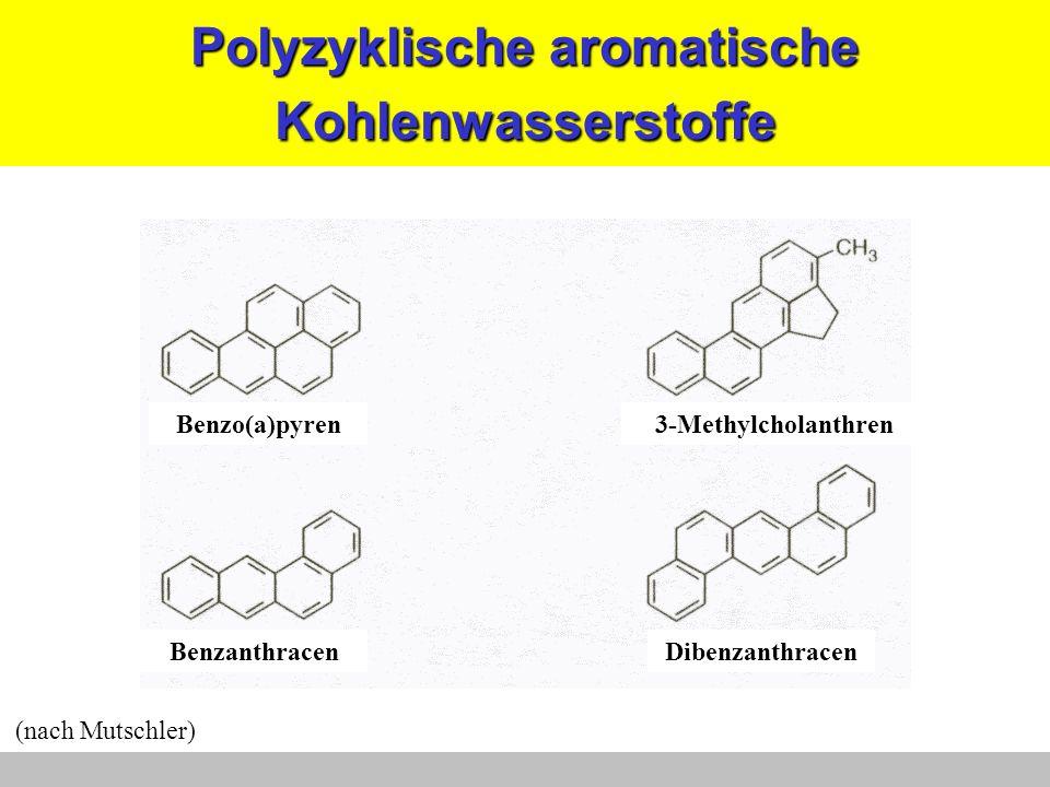 Polyzyklische aromatische Kohlenwasserstoffe DibenzanthracenBenzanthracen 3-MethylcholanthrenBenzo(a)pyren (nach Mutschler)