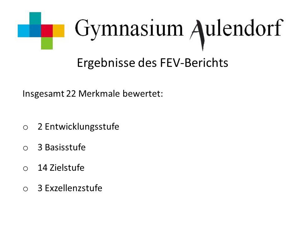 Ergebnisse des FEV-Berichts Insgesamt 22 Merkmale bewertet: o 2 Entwicklungsstufe o 3 Basisstufe o 14 Zielstufe o 3 Exzellenzstufe