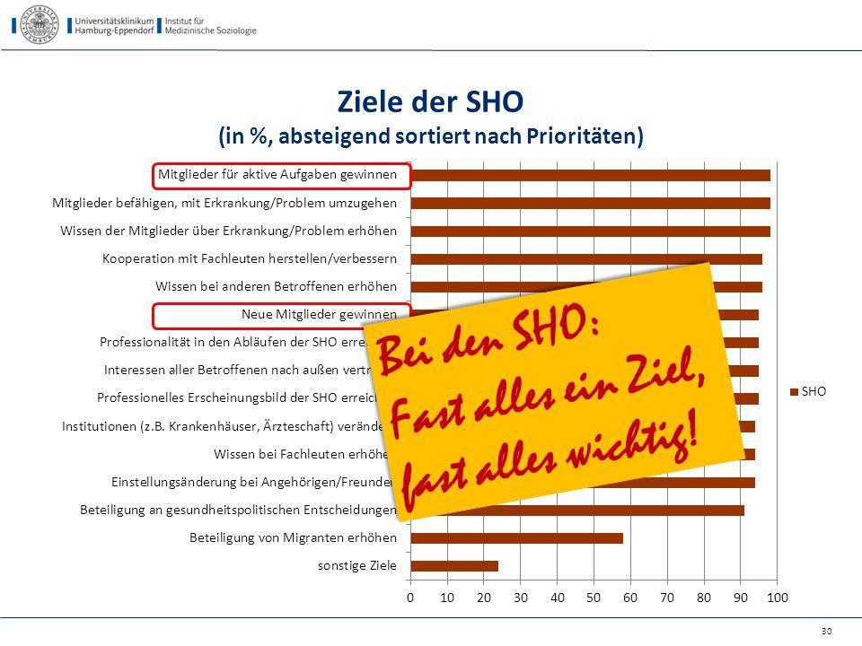 Ziele der SHO (in %, absteigend sortiert nach Prioritäten) 30 Bei den SHO: Fast alles ein Ziel, fast alles wichtig! Bei den SHO: Fast alles ein Ziel,
