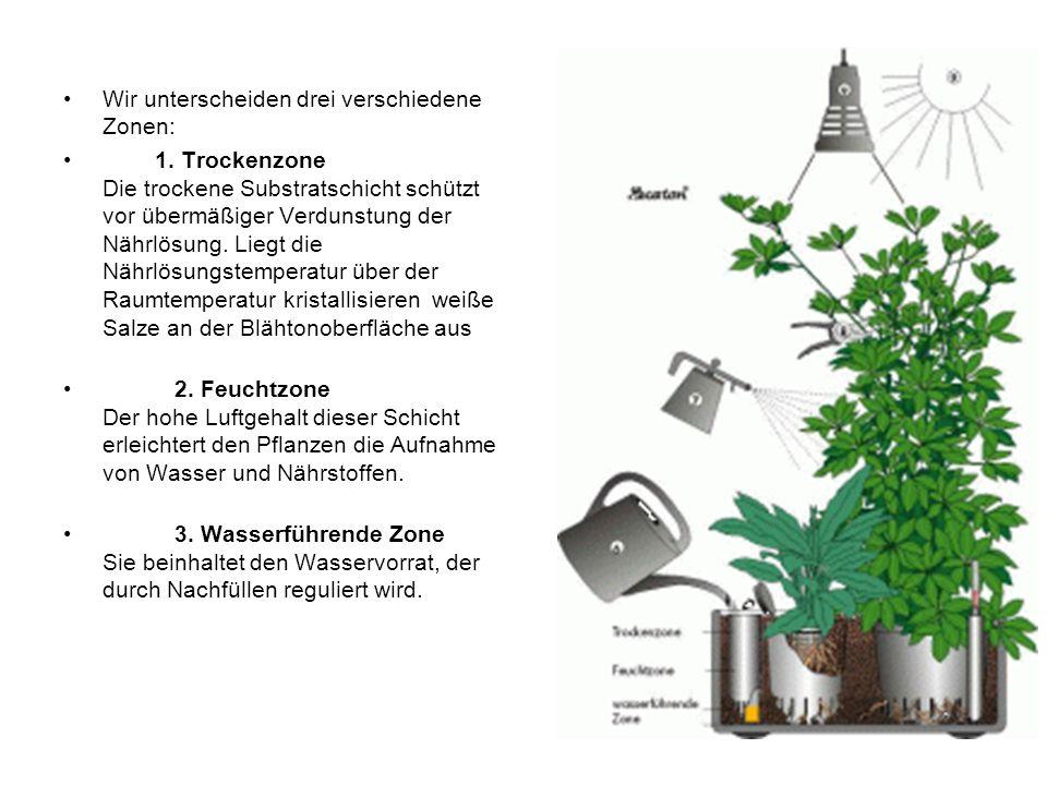 Wir unterscheiden drei verschiedene Zonen: 1. Trockenzone Die trockene Substratschicht schützt vor übermäßiger Verdunstung der Nährlösung. Liegt die N