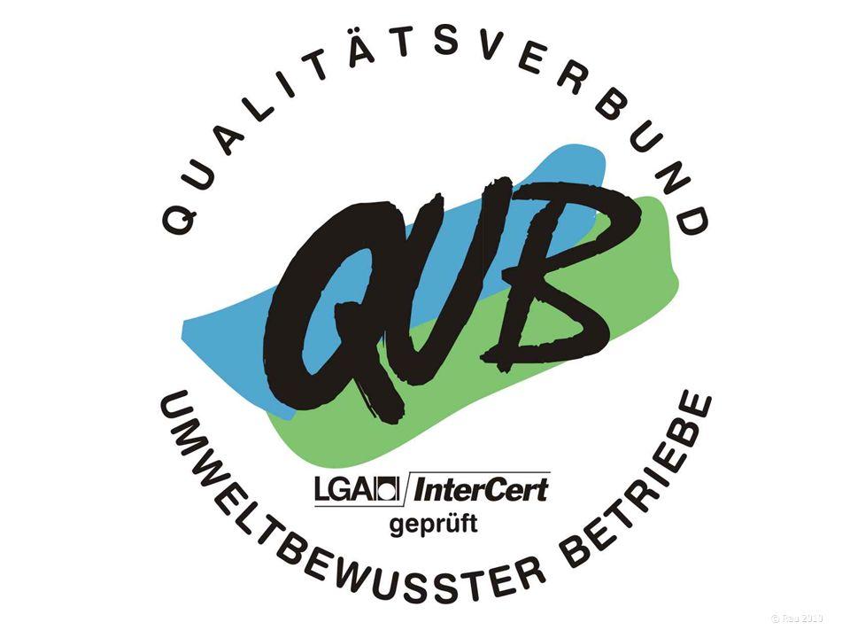- QuB - Erfahrungen aus der Sicht des Beraters und Auditors © Rau 2013 Was ist zu tun.