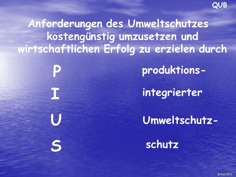 Anforderungen des Umweltschutzes kostengünstig umzusetzen und wirtschaftlichen Erfolg zu erzielen durch produktions- integrierter Umweltschutz- P I U