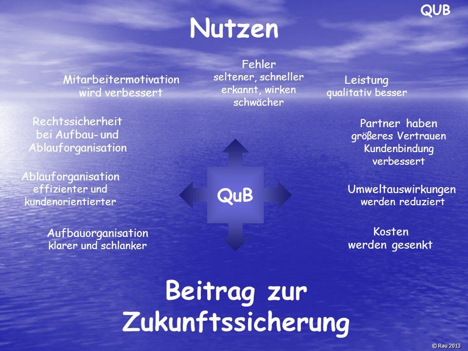 © Rau 2013 QuB Aufbauorganisation klarer und schlanker Ablauforganisation effizienter und kundenorientierter Beitrag zur Zukunftssicherung Umweltauswi
