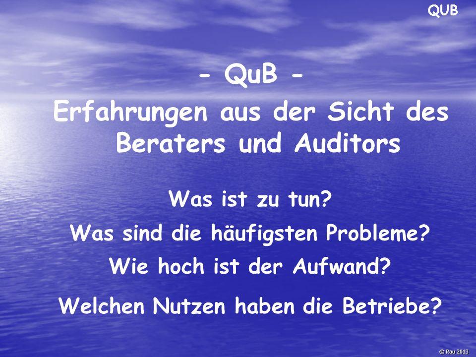 - QuB - Erfahrungen aus der Sicht des Beraters und Auditors © Rau 2013 Was ist zu tun? Wie hoch ist der Aufwand? Was sind die häufigsten Probleme? QUB