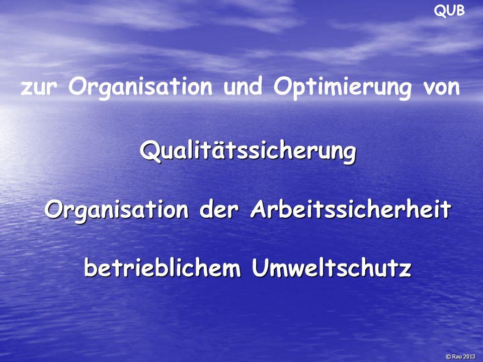 Motivation/ Ziele zur Einführung eines Managementsystems: © Rau 2013 Optimierung der Umweltauswirkungen Optimierung des Betriebsergebnisses Standortsicherung Marktzugang QUB