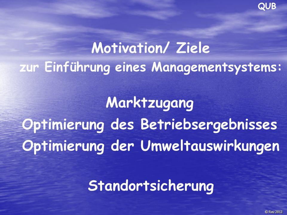 Motivation/ Ziele zur Einführung eines Managementsystems: © Rau 2013 Optimierung der Umweltauswirkungen Optimierung des Betriebsergebnisses Standortsi