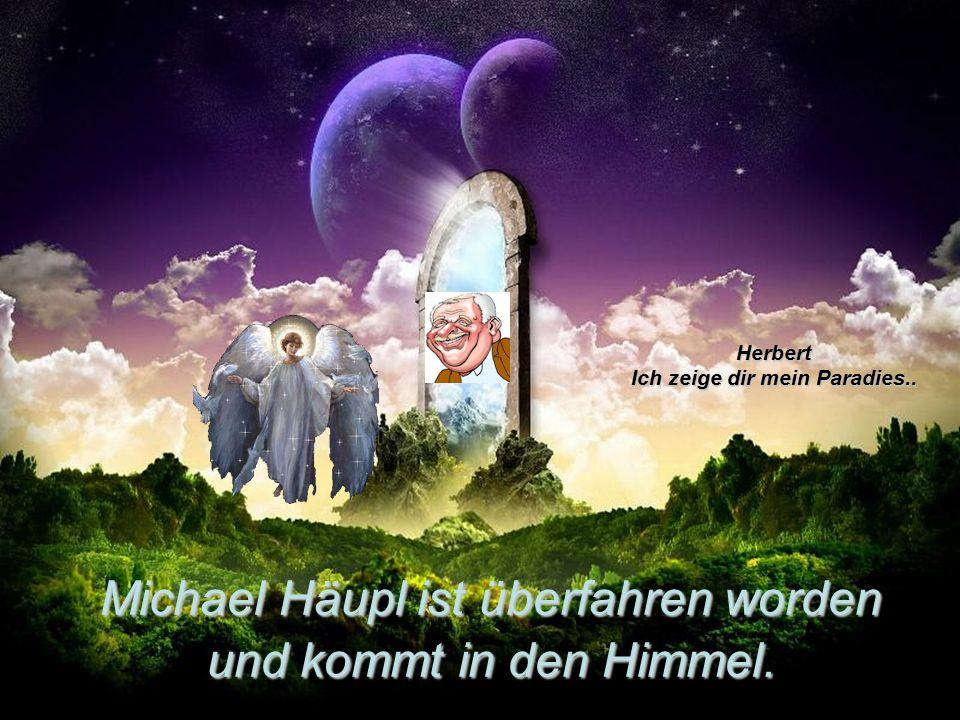 Michael Häupl ist überfahren worden und kommt in den Himmel. Herbert Ich zeige dir mein Paradies..