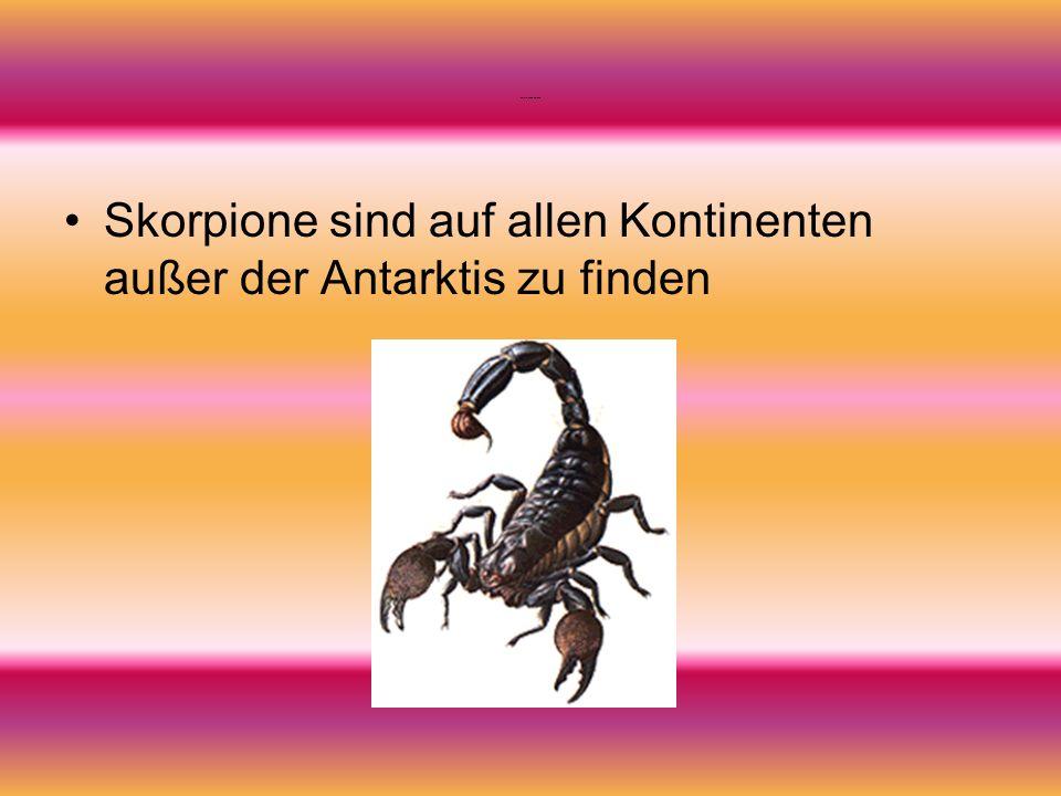 Verbreitung der Skorpione Skorpione sind auf allen Kontinenten außer der Antarktis zu finden
