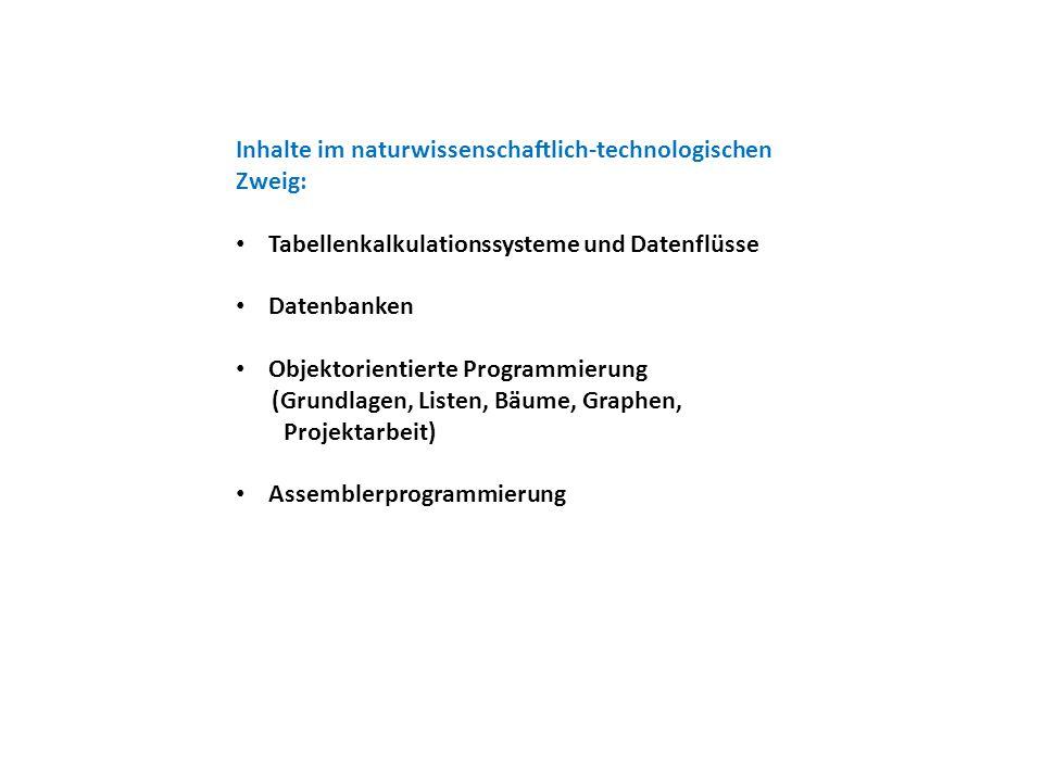 Inhalte im naturwissenschaftlich-technologischen Zweig: Tabellenkalkulationssysteme und Datenflüsse Datenbanken Objektorientierte Programmierung (Grundlagen, Listen, Bäume, Graphen, Projektarbeit) Assemblerprogrammierung