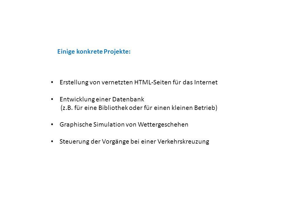 Einige konkrete Projekte: Erstellung von vernetzten HTML-Seiten für das Internet Entwicklung einer Datenbank (z.B.