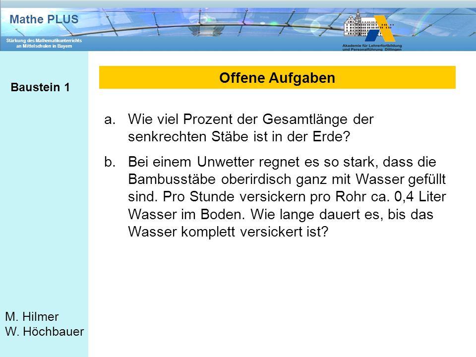 Mathe PLUS Stärkung des Mathematikunterrichts an Mittelschulen in Bayern M. Hilmer W. Höchbauer Offene Aufgaben Baustein 1 a.Wie viel Prozent der Gesa