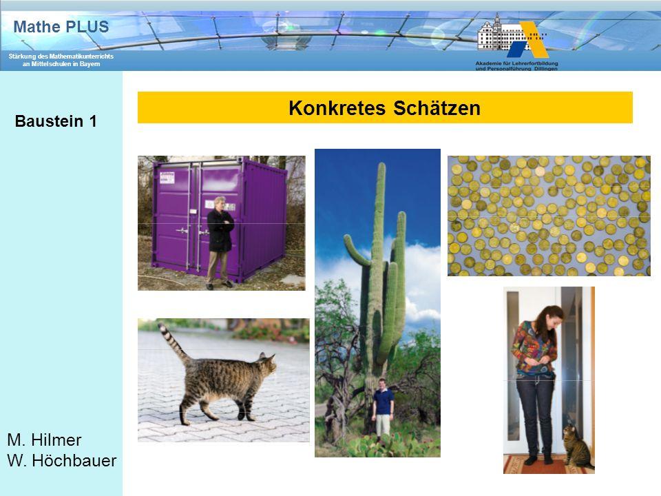 Mathe PLUS Stärkung des Mathematikunterrichts an Mittelschulen in Bayern M. Hilmer W. Höchbauer Konkretes Schätzen Baustein 1