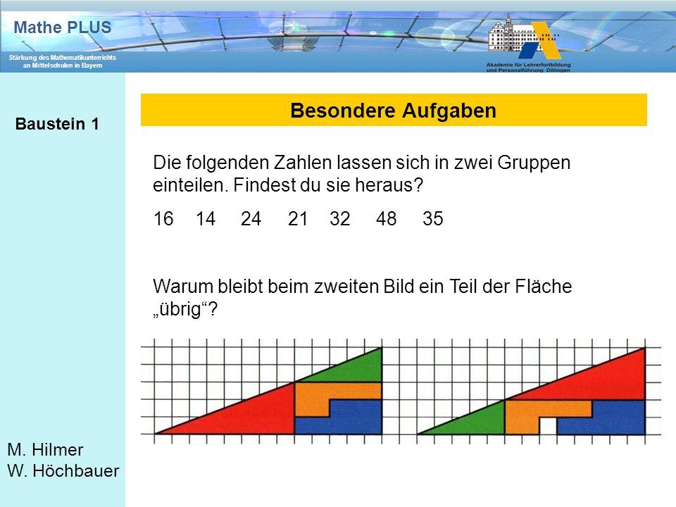 Mathe PLUS Stärkung des Mathematikunterrichts an Mittelschulen in Bayern M. Hilmer W. Höchbauer Besondere Aufgaben Baustein 1 Die folgenden Zahlen las