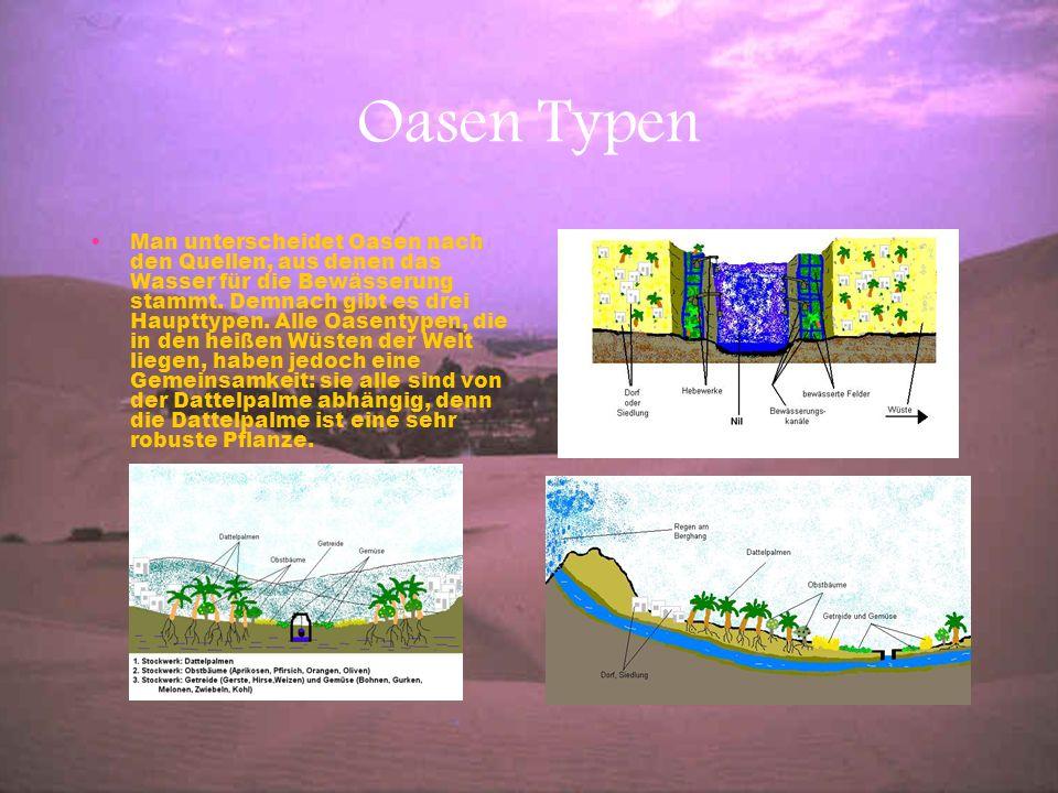 Oasen Typen Man unterscheidet Oasen nach den Quellen, aus denen das Wasser für die Bewässerung stammt. Demnach gibt es drei Haupttypen. Alle Oasentype