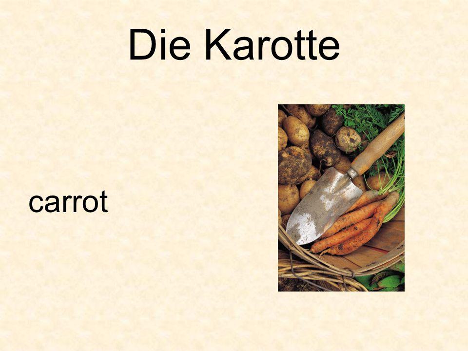Die Karotte carrot