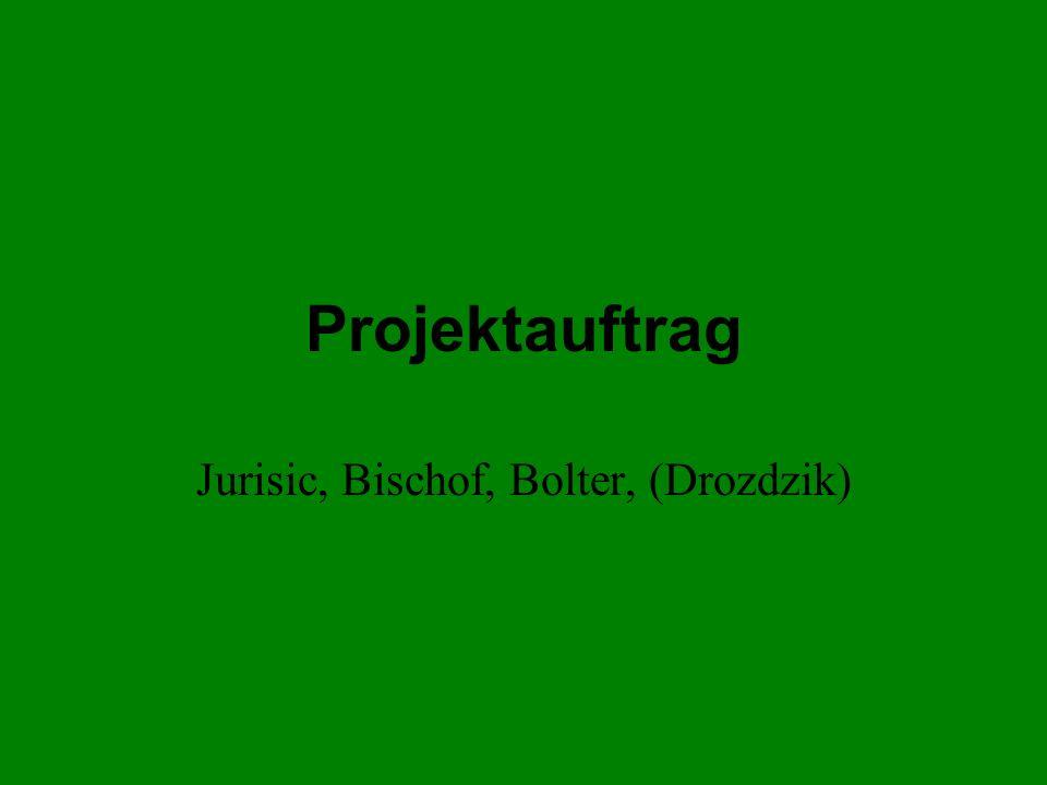 Projektauftrag Jurisic, Bischof, Bolter, (Drozdzik)