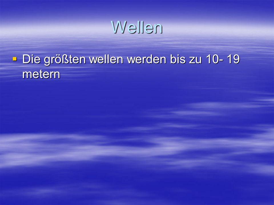 Wellen  Die größten wellen werden bis zu 10- 19 metern
