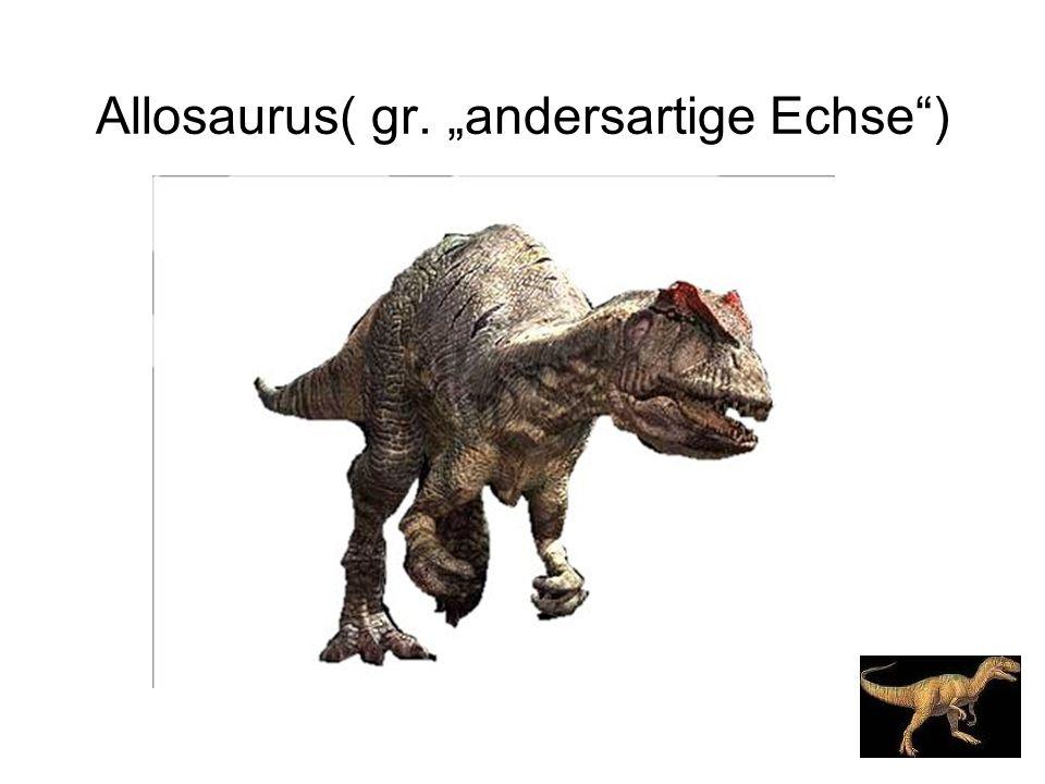 "Allosaurus( gr. ""andersartige Echse"")"