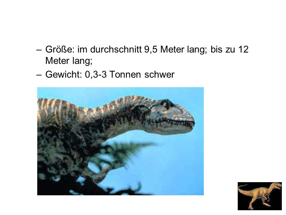 –Größe: im durchschnitt 9,5 Meter lang; bis zu 12 Meter lang; –Gewicht: 0,3-3 Tonnen schwer