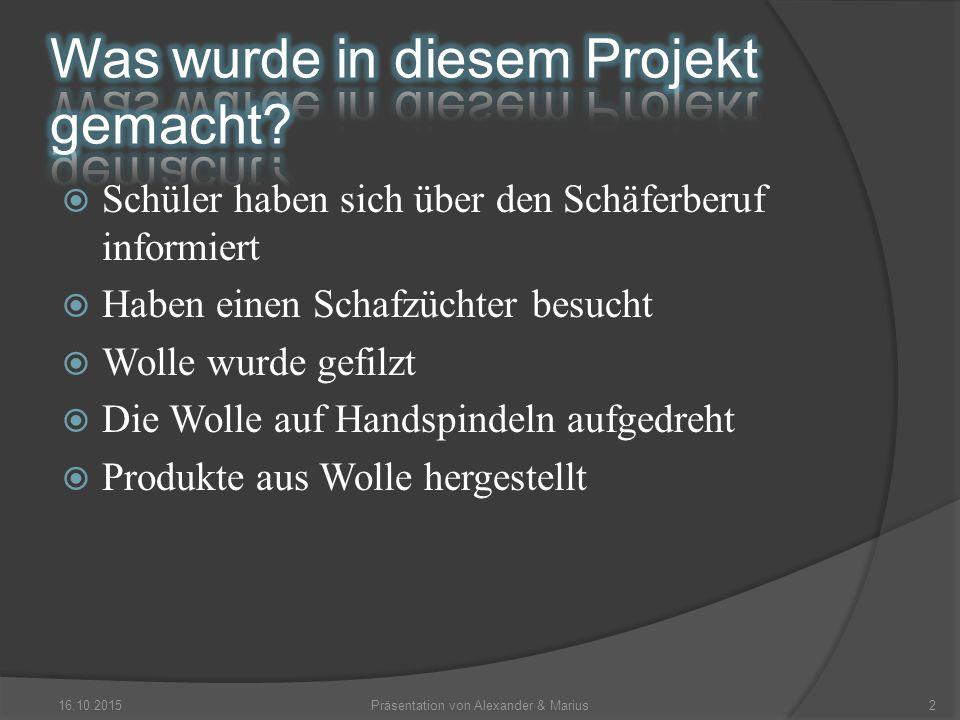 16.10.2015Präsentation von Alexander & Marius3 Spindel Reinigungsbürste