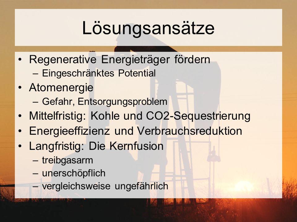 Lösungsansätze Regenerative Energieträger fördern –Eingeschränktes Potential Atomenergie –Gefahr, Entsorgungsproblem Mittelfristig: Kohle und CO2-Sequ