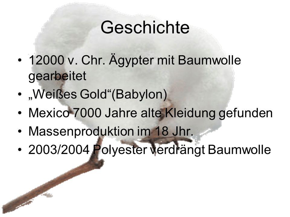 """Geschichte 12000 v. Chr. Ägypter mit Baumwolle gearbeitet """"Weißes Gold""""(Babylon) Mexico 7000 Jahre alte Kleidung gefunden Massenproduktion im 18 Jhr."""