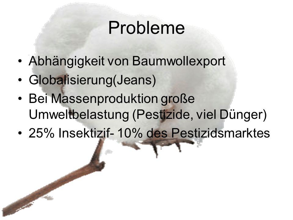 Probleme Abhängigkeit von Baumwollexport Globalisierung(Jeans) Bei Massenproduktion große Umweltbelastung (Pestizide, viel Dünger) 25% Insektizif- 10%
